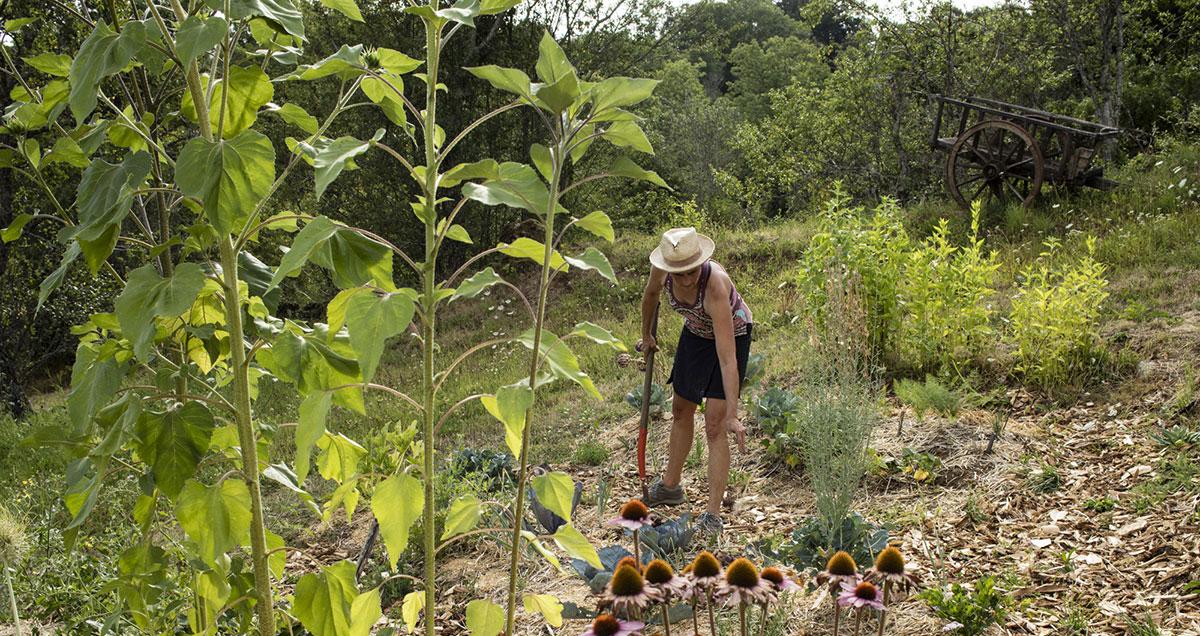 Aubrac-Carladez-Viadene-Cultiver-son-jardin